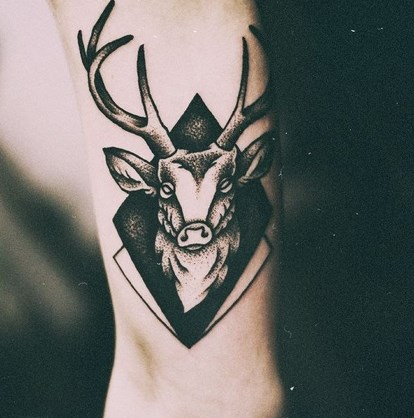 tattooirovki_oleney-37.jpg
